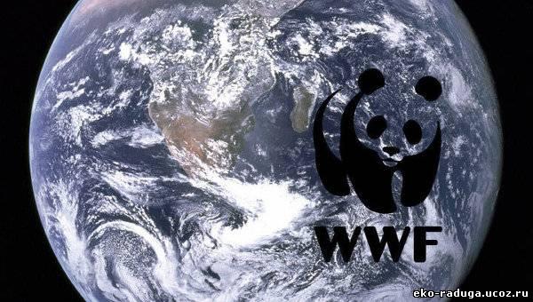 Картинки по запросу День рождения Всемирного фонда дикой природы (WWF)